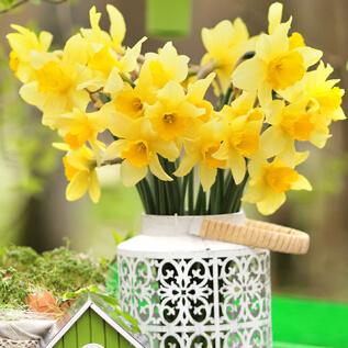 Flower gifts Penbryn