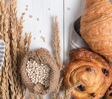 Bakery Gift Baskets Delivered to Philadelphia